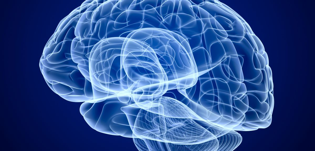 World's most in-depth study to detect early signs of Alzheimer's disease