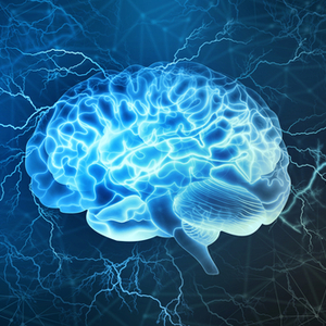 How decisions form in the brain: A physical basis for a cognitive process