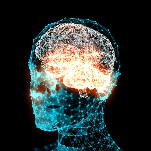 Brain activity predicts the force of your actions