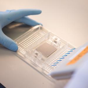 Cancer vaccine firm Oxford Vacmedix closes $12.5m Series A funding