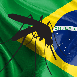 First virus genome analysis gives new insights into Brazilian Zika outbreak