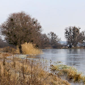 Natural measures to prevent floods are not a 'silver bullet'