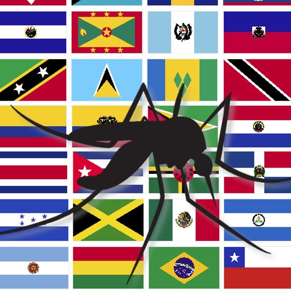 Where next for the Zika virus?