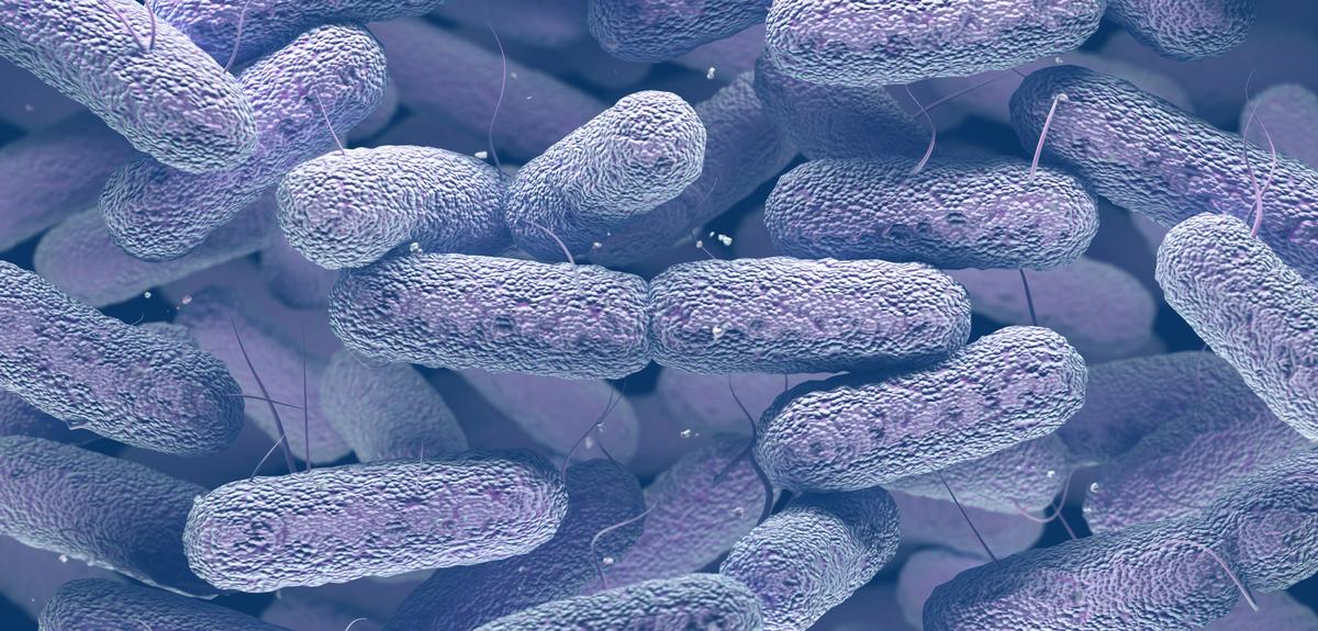 Controlling the spread of antibiotic resistant bacteria