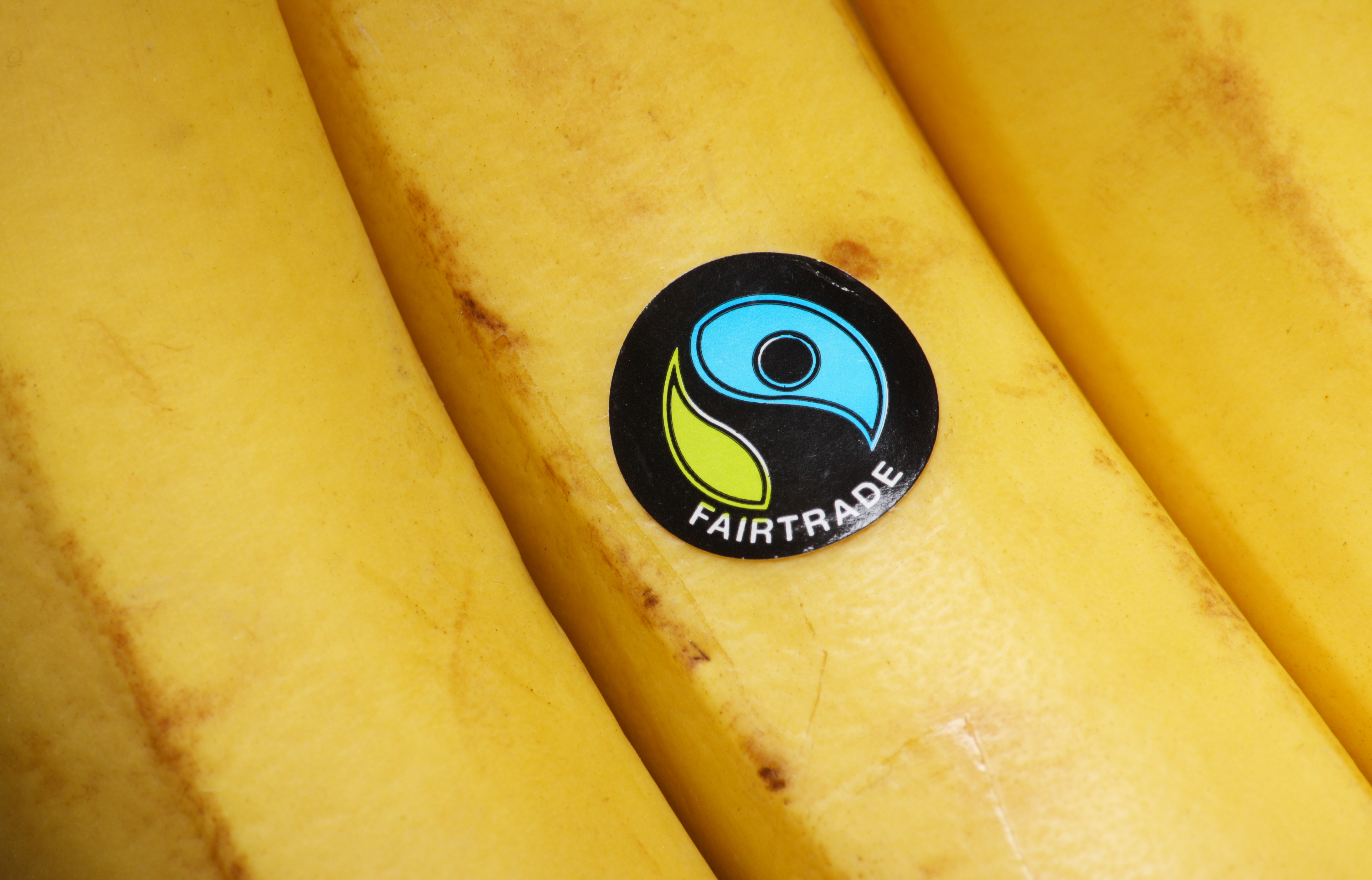 University gains Fairtrade University and College Award