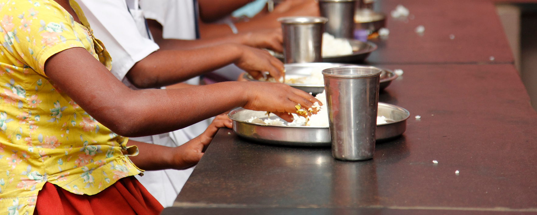 Wasting of Indian children in the recession 'linked to food price spikes'