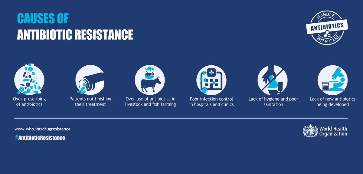 Study to check antibiotic resistance in Ganga - INSIGHTSIAS