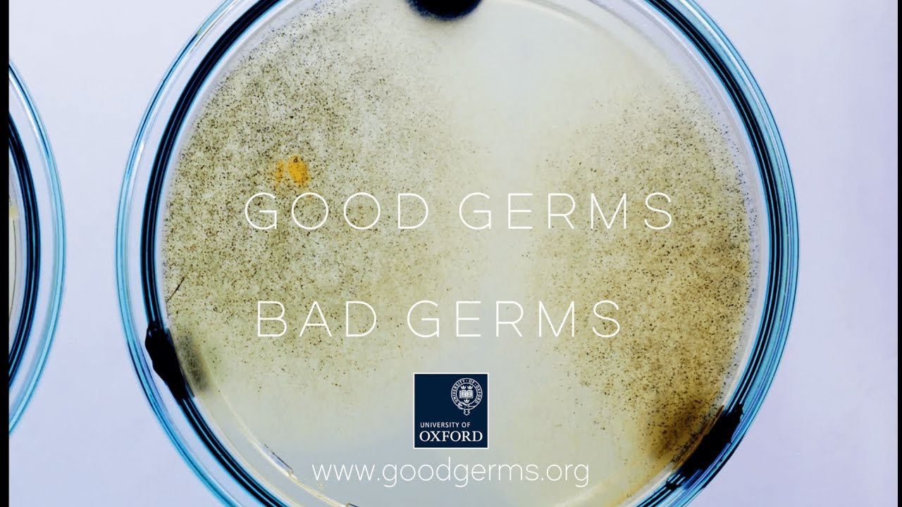 Good Germs; Bad Germs