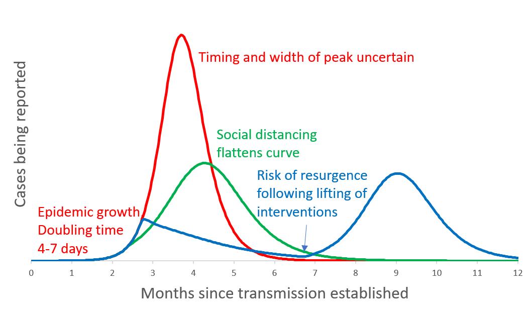 Coronavirus graph