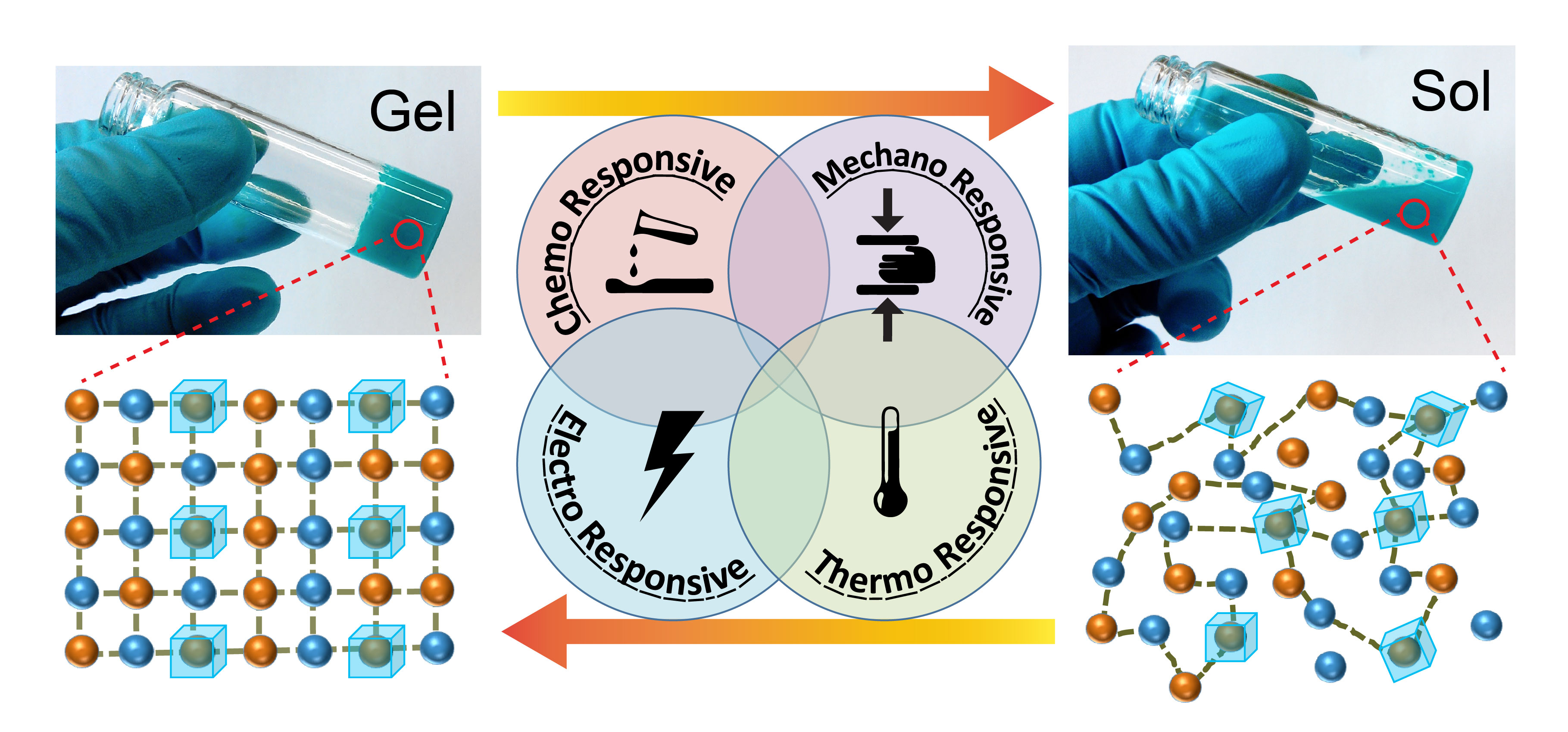 Reversible conversion of a hybrid gel subject to physical and chemical stimuli