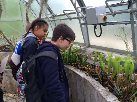 Museum Club members in greenhouse