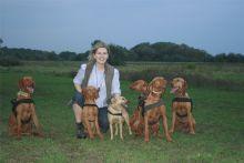 Hedvig Balázs takes her Vizsla dogs for a walk near Budapest, Hungary
