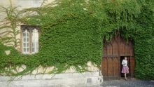 Student walking through an ivy-covered door