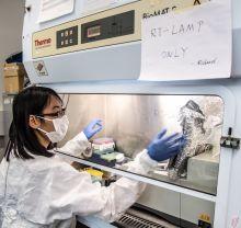 Rapid RNA test