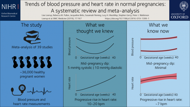 Heart rate and blood pressure changes during pregnancy are less dramatic  than previously thought | University of Oxford