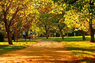 University Parks in Autumn