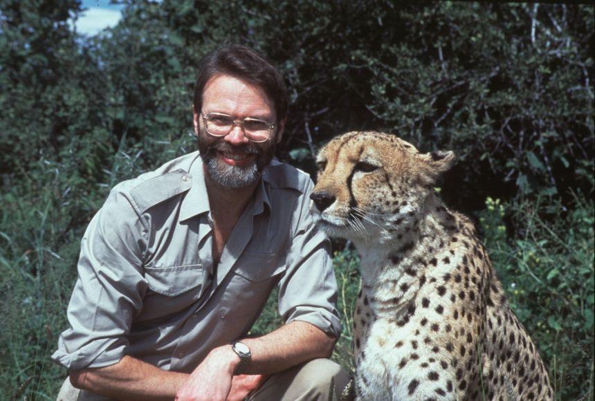 David Macdonald with cheetah