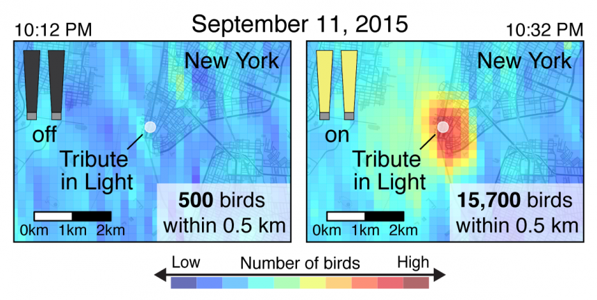 """Figure adapted from """"High-intensity urban light installation dramatically alters nocturnal bird migration"""" in Proceedings of the National Academy of Sciences, September 2017"""