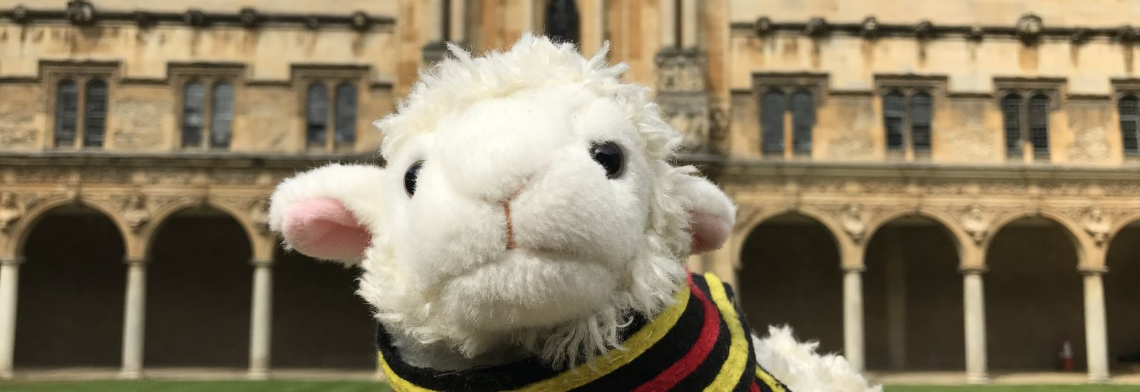 Agnes the Access Lamb, mascot of the St John's Access Office, in Canterbury Quad