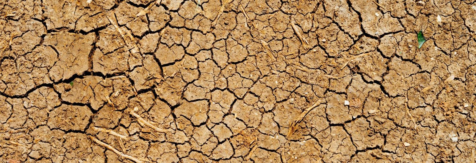 Overhead image of dry, cracked riverbed