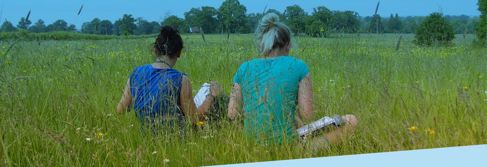 Two students sitting working in a meadow with their backs to the camera