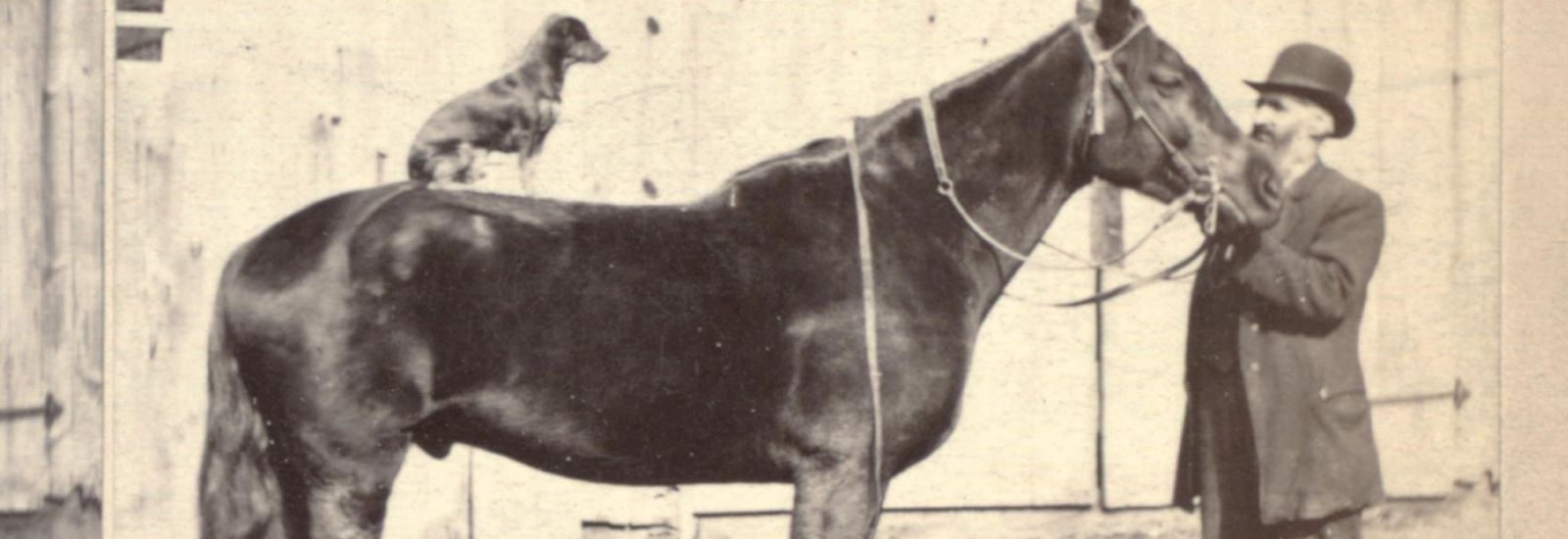 Sepia photograph of a horse with a dog sat on its back and a man in a bowler hat stood by its head.