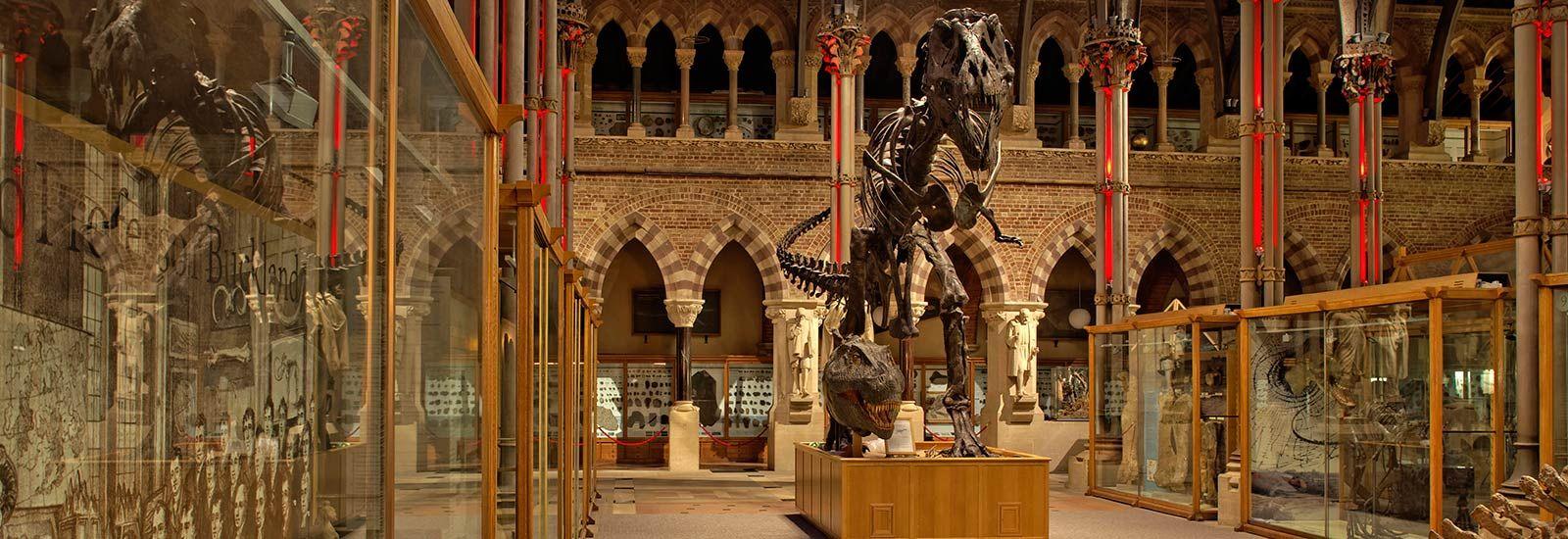 Interior of Natural History Museum at night