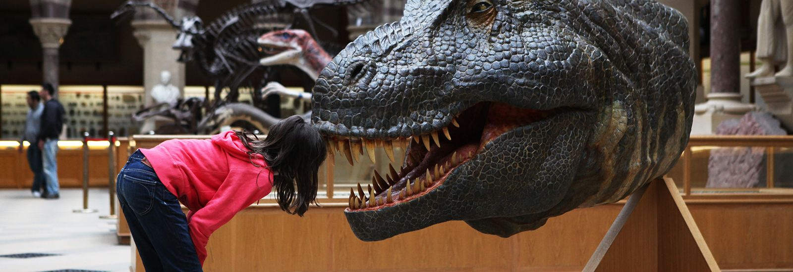 Girl looking at exhibits at Oxford University Museum of Natural History