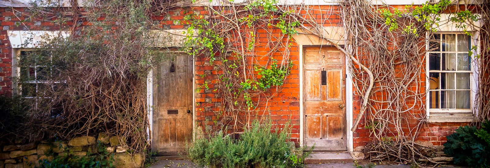 Two doorways with plants growing up the walls
