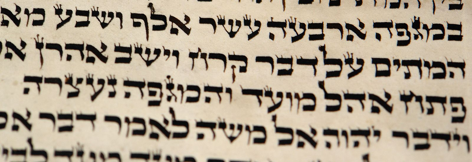 A close-up of Biblical text in Hebrew