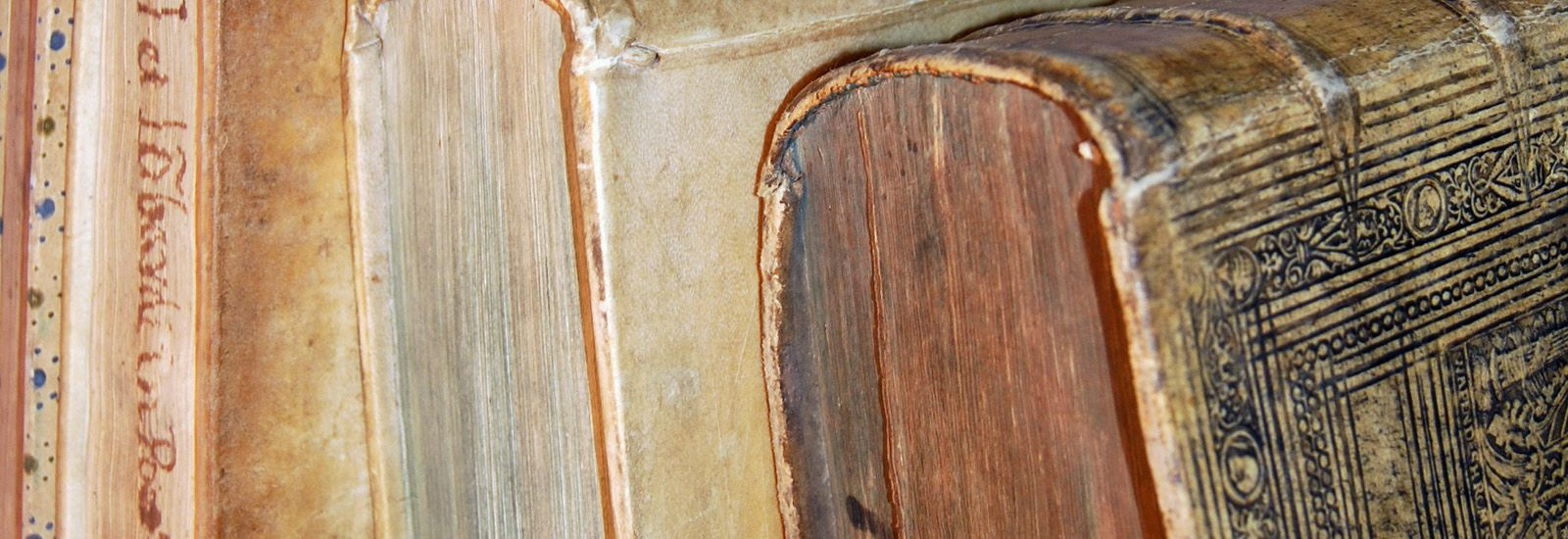 A close up of the spines of old books