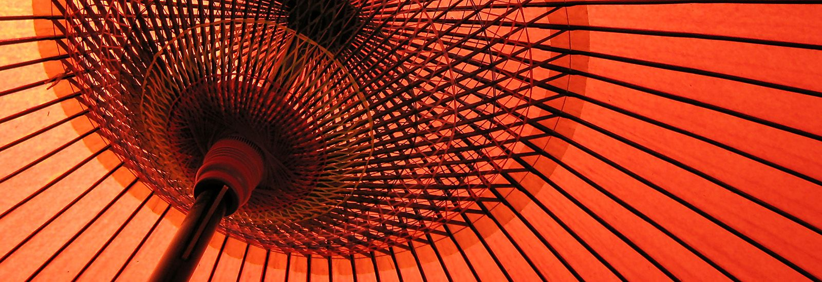 Close up of the inside of a parasol