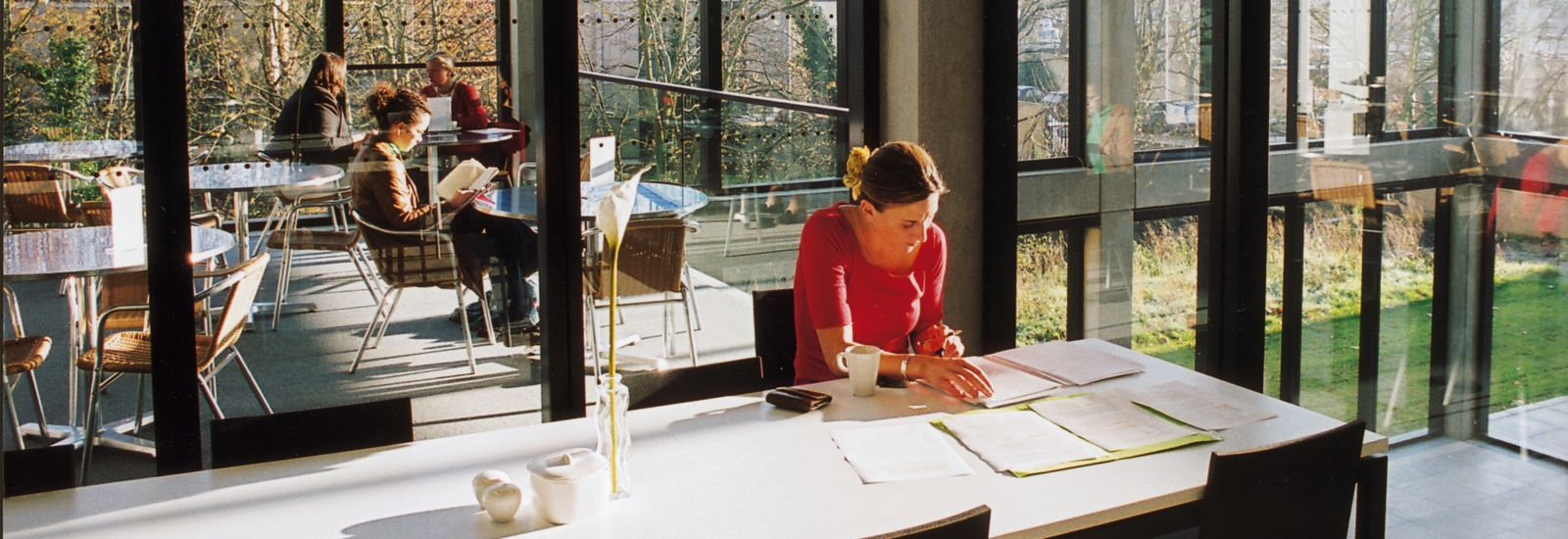Students studying in a glass-walled cafe