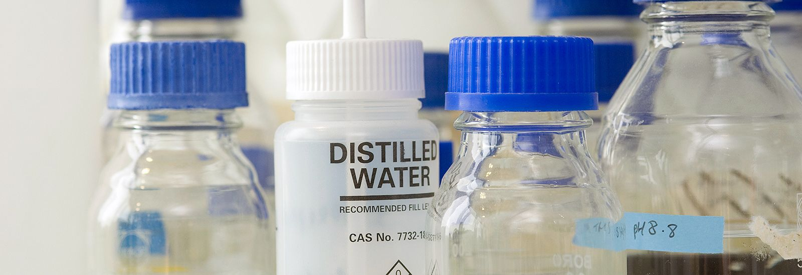 Bottles of distilled water