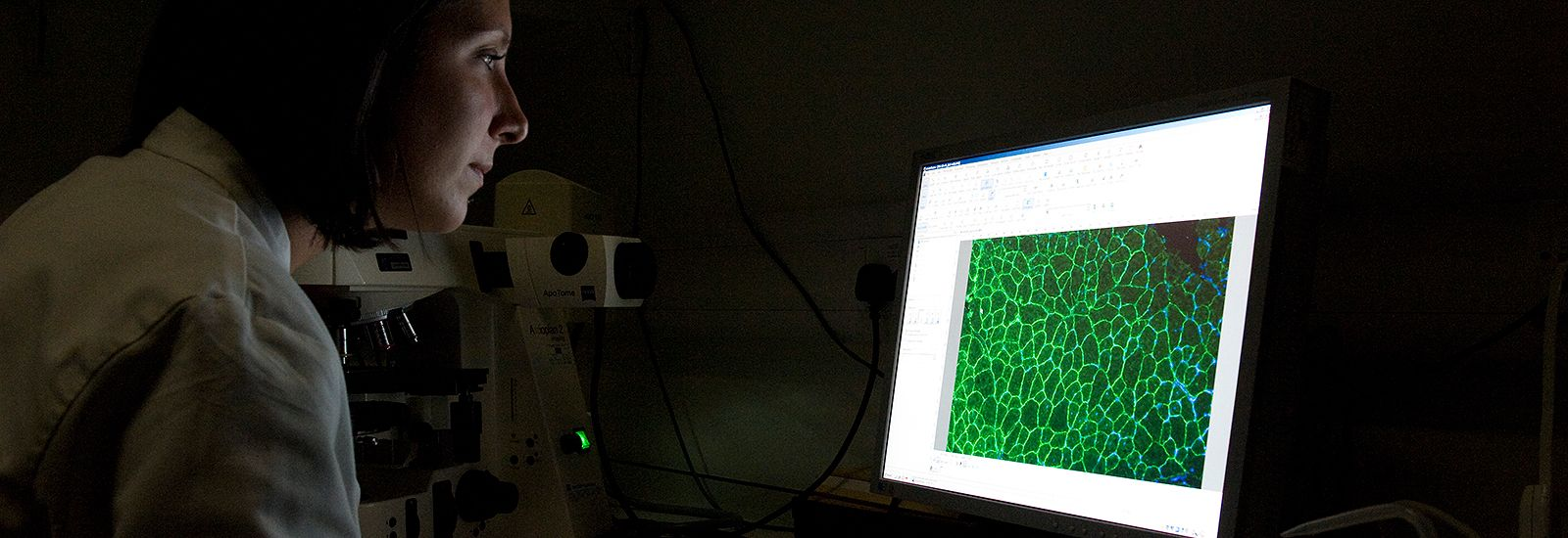 A student looking at microscopic image on screen