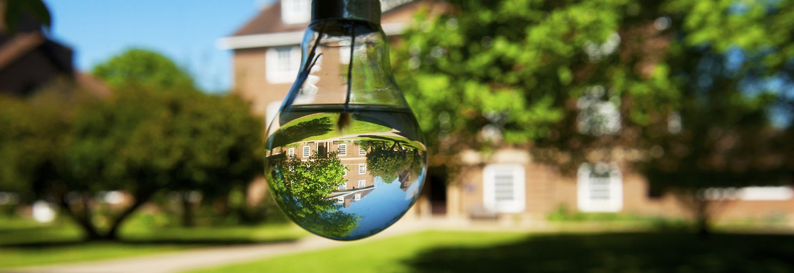 Reflection of a college quad upside-down in a lightbulb