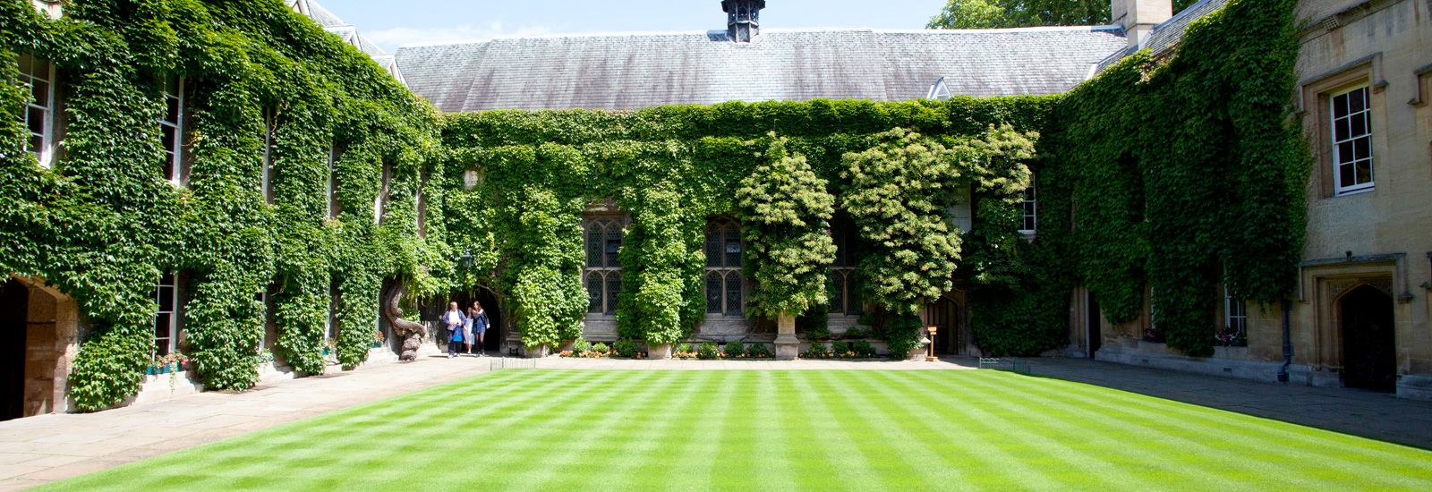 The front quad at Lincoln College with buildings covered in ivy