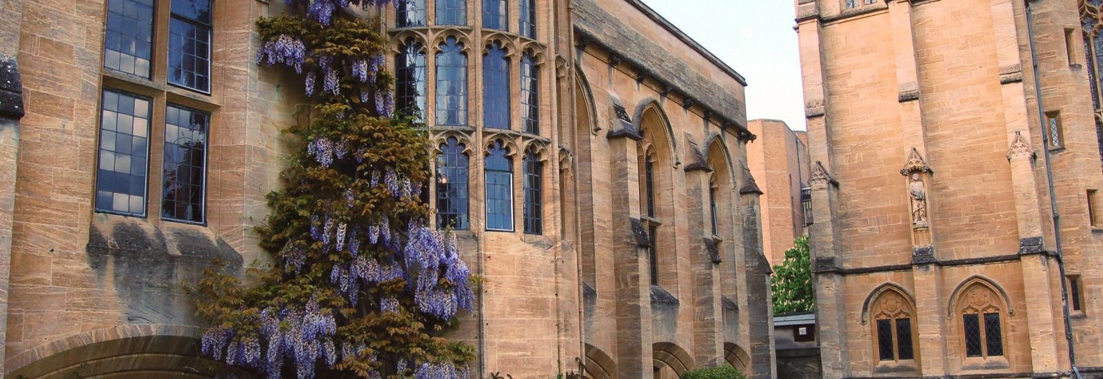 Buildings with wisteria in Mansfield College