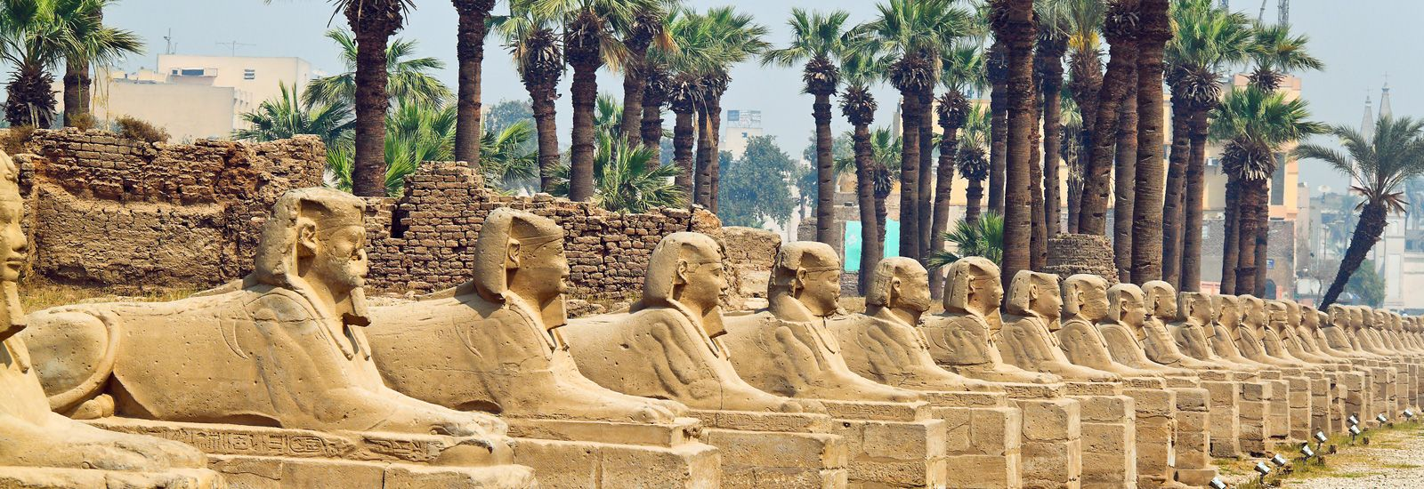 Row of human-headed sphinx statues at Luxor Temple