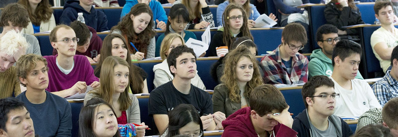 Undergraduate profiles