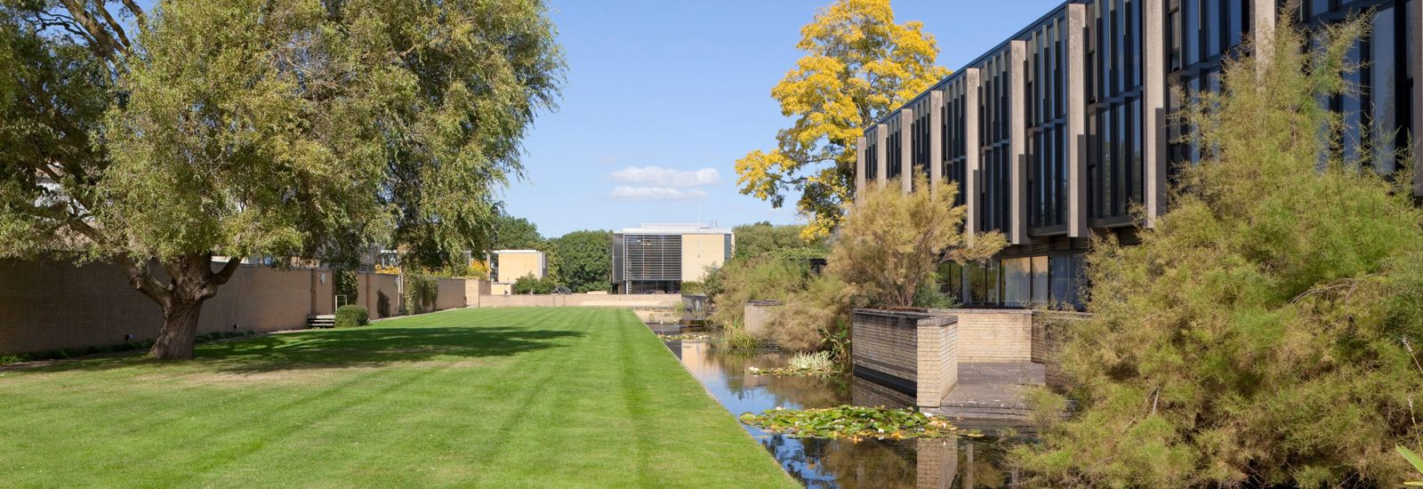 A quad, pond and buildings at St Catherine's College