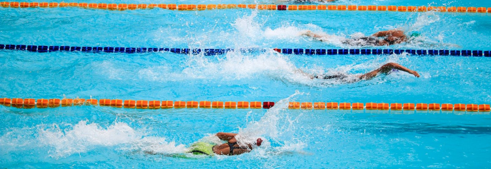 Swimmers competing in a pool.