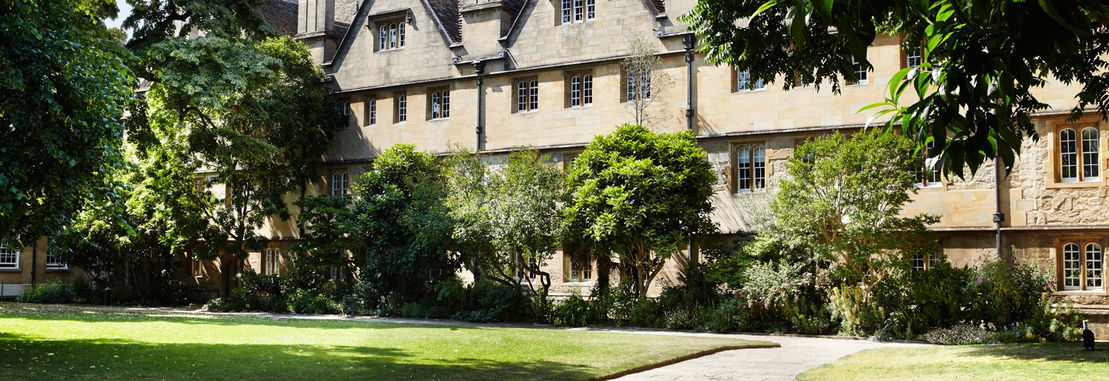 Trees and buildings in Wadham College