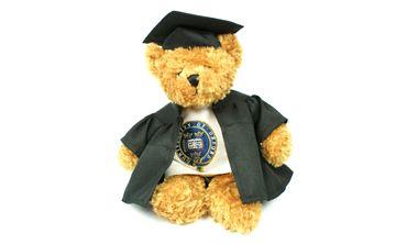 Graduate Teddy