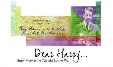 Dear Harry exhibition