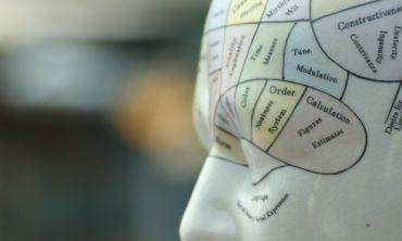 Psychology (Experimental)