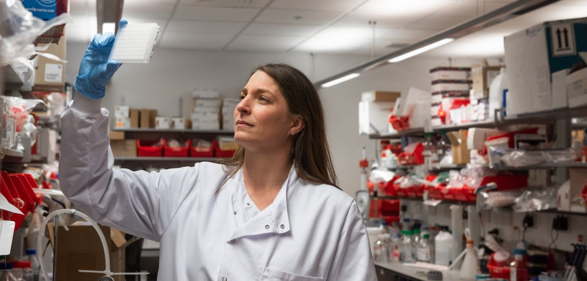 Oxford coronavirus vaccine researcher Katie Ewer inspects samples in the lab