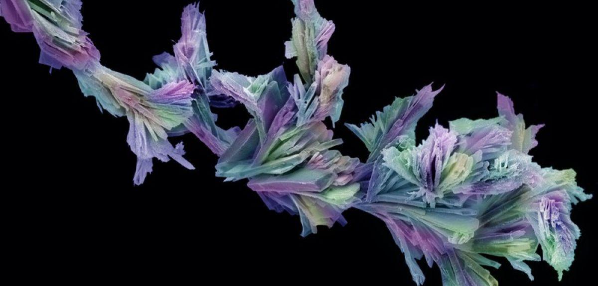 Aspirin crystals