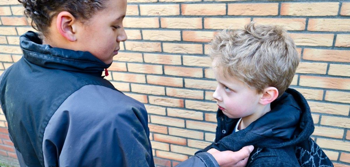 The research suggests interventions are needed to combat sibling bullying