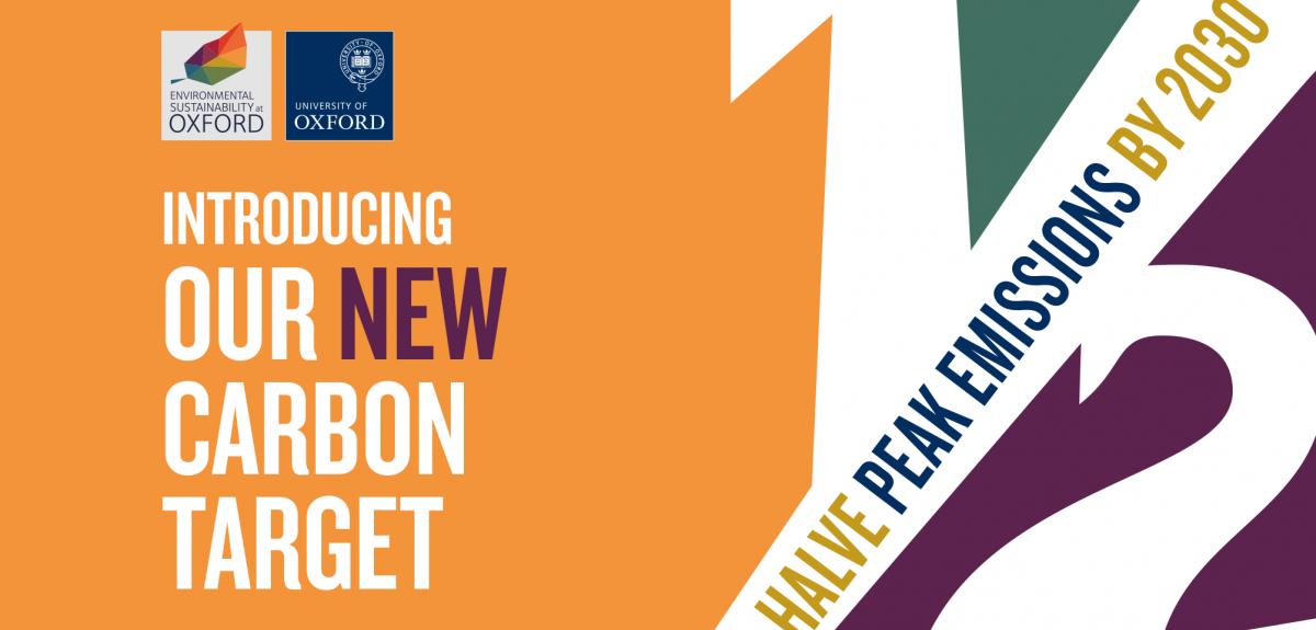 2019 carbon target banner